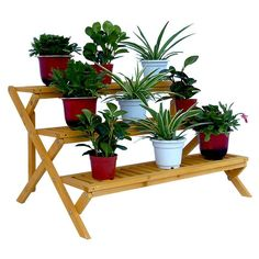 Leisure Season 3 Tier Step Plant Stand | from hayneedle.com
