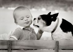 Why Children are so closely with Animals,Because they are both pure……