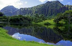 Ho'omaluhia Botanical Garden. ( completed 2013 ) I love taking my babies here for picnics, camping and fishing.
