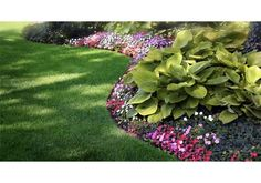 flower beds in front of house - Google Search