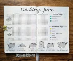 Bullet Journal Tracker with Mood, Habits, and Weather all on one page