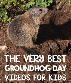 Groundhog Day Videos for the lower elementary classroom