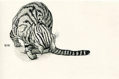 Cat original drawing  P004November2015 by kushun55 on Etsy