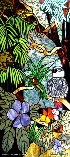Stained Glass Heirlooms: African Gray Parrot
