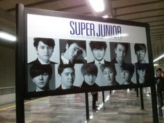 super junior Super Show 5  in mexico