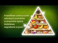 Piramida żywienia Montessori, Zero, Teaching, Education, Film, Nature, Geography, Physics, Chemistry