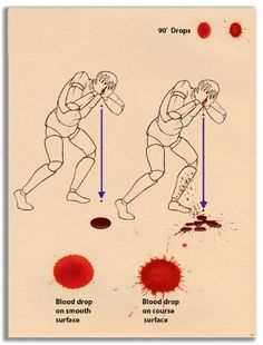 Basic information on bloodstain evidence rcovered from the crime scene. Provide expert testimony in bloodstain pattern analysis. Art Reference Poses, Drawing Reference, Drawing Techniques, Drawing Tips, Art Sketches, Art Drawings, Forensic Anthropology, Book Writing Tips, Forensic Science