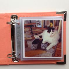 Our crafty customer, Lish Dorset printed some adorable prints of her cat! You can find more of her fun craft ideas on her site: http://lishdorset.com/  And for our classic square prints:  http://printstud.io/ & http://printstagr.am/