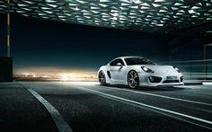 Porsche Guess Model ?