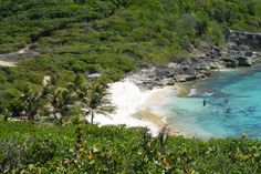 Plage de Tarare  - Guadeloupe - French Caribbean Island French Creole, Outre Mer, White Sand Beach, Caribbean, Travel Destinations, Surfing, Europe, River, Explore