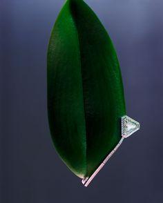 Issue 8 (F-W 2013) High jewelry by Florian Joye, Florence Tétier & Georgia Pendlebury