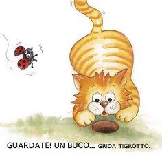 http://www.edizionidbs.it/shop/bambini/oh-oh-tigrotto/ #Tigrotto #gatto #bambini #storie #dislessia