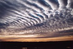 Altocumulus Mackerel Sky - Photographs of altocumulus mackerel sky clouds picture image photo [ac] Looking Up, Art Forms, Astronomy, Garden Design, Art Photography, Most Beautiful, Waves, Weather, Clouds