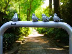 http://www.facebook.com/photo.php?fbid=542135962505253=a.507321505986699.137892.504778156241034=1