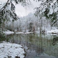 30 Wv Wildlife Ideas Wildlife West Virginia West Virginia Mountains