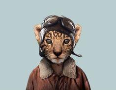 25 montagens hilárias de animais vestidos como humanos
