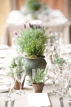 Wedding Trends Brilliant ideas for natural and eco-friendly wedding decorations - Top tips and inspiration for beautiful and eco-friendly wedding decorations Potted Plant Centerpieces, Wedding Table Centerpieces, Ceremony Decorations, Flower Centerpieces, Centerpiece Ideas, Simple Wedding Table Decorations, Wedding Plants, Wedding Flower Arrangements, Floral Arrangements