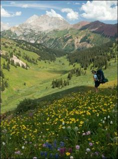 Summer hiking in Crested Butte - Pretty close to Heaven on Earth. Colorado Hiking, Colorado Mountains, Vail Colorado, Colorado Wildflowers, Crested Butte Colorado, Flora, Adventure Is Out There, Beautiful Landscapes, The Great Outdoors