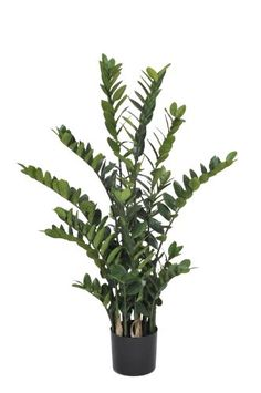 House of Silk Flowers Artificial Zamioculcas Zanzibar Gem 45Feet * More info could be found at the image url. (This is an affiliate link and I receive a commission for the sales)