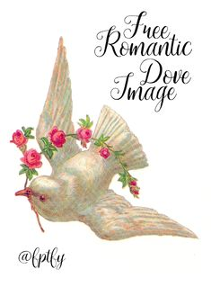 Free Romantic Dove Image- So Pretty! - Free Pretty Things For You Vintage Birds, Vintage Images, Vintage Clip, Vintage Art, Dove Pictures, Room Stickers, Free Digital Scrapbooking, Christmas Scenes, Valentine Crafts