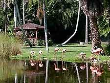1000 Images About Good Old Florida On Pinterest Old Florida Florida And Vintage Florida