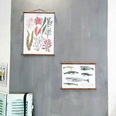 Así de preciosa ha quedado la pared de @trecegolondrinas pintada con la Autentico Venice, de color Elephant Grey y con la técnica Up & Down. Si buscas conseguir un marcado efecto de aguas los colores oscuros son tus aliados 😉 #autenticochalkpaint #chalkpaintes #autenticopaint #pinturanatural #ecofriendly #naturalpaint #chalkpaint #laliwhite #laiablanco #autenticovenice #paredespinterest