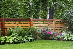 Delectable Garden fence u post,Wood fence questions and Front yard fence ugly. Backyard Fences, Garden Fencing, Backyard Landscaping, Privacy Fence Landscaping, Natural Landscaping, Natural Fence, Backyard Privacy, Landscaping Software, Landscaping Ideas