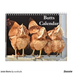 Shop 2020 Butts Calendar created by sunbuds. Gifts For Teens, Gifts For Family, Important Dates, Gag Gifts, Prank Gifts, Months In A Year, Pet Birds, Kittens, Calendar Calendar