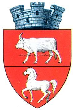 Ținutul Suceava. Județul Dorohoi. Săveni. Capital City, Coat Of Arms, Cities, Moose Art, Animals, Animales, Animaux, Animal Memes, Animal