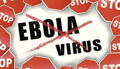 India on alert for Ebola virus. India has issued advisory for country's airlines operating on international routes to ensure detection of Ebola virus from four Liberia, Content Management System, Health Ministry, Website Design, Medicinal Herbs, Health Advice, Sierra Leone, Good News, Natural Remedies