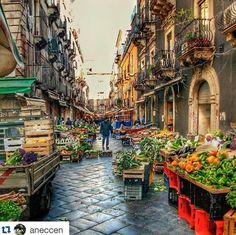 Catania, Pescheria.