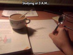 College Life.