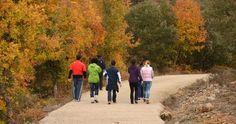Os peregrinos saberão melhor do que ninguém: nas caminhadas religiosas enfrentam diversas adversidades. O clima, a distância, as dores e, para se juntar a este rol de dificuldades, o aparecimento de bolhas no pé.