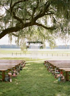 Rustic Outdoor Summer Wedding Ceremony with Vintage Pews | Emily Katharine Photography | http://heyweddinglady.com/rustic-lakeside-brunch-wedding-film-photography/