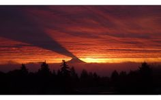 MOUNT RAINIER CASTING A SHADOW ON CLOUDS  Photograph by Nick Lippert (via Komo News)  This rare and remarkable phenomenon only happens when the sun rises farther to the south as Winter solstice approaches. At the right place and time, Mount Rainier blocks rays of morning sunlight, casting a shadow.
