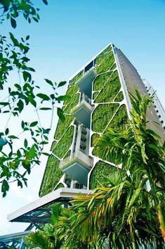 The world's largest vertical garden.    Going green   vertical garden    #GoingGreenAtOffice #LargestVerticalGarden www.ironageoffice.com
