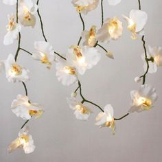 most silk florals have an opening in the center to accommodate the artificial stem. Use the tops over simple string lights. White Orchid String Lights - View All Lighting - Lighting Flower Fairy Lights, Led Fairy Lights, White String Lights, Light Chain, White Orchids, Light Project, To Infinity And Beyond, Diy Flowers, Flower Diy