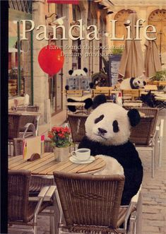 Japanese panda bear in the coffeeshop notepad exercise book  frommodes4u.com