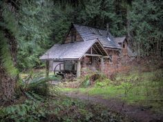 Cabin in the Woods fine art print cij by jalinde on Etsy, $14.99