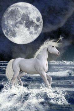 2018/02/15 Unicorn and the Moon