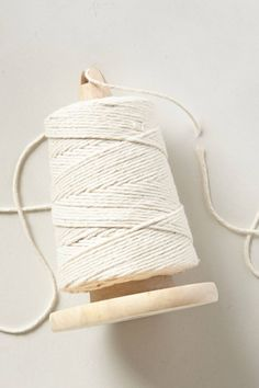 crafting supply >> I will bring some twine to tie the branches/pieces together