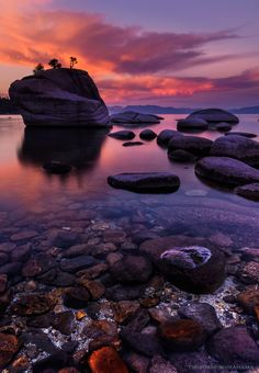Bonsai Morning Glow by Tsuyoshi Shirahama on 500px