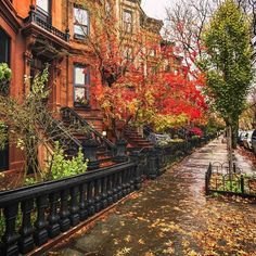 Fall in New York City.