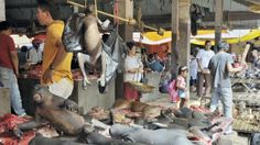 Tote, verstümmelte Affen und Hunde werden auf einem Markt in Indonesien angeboten, wie ein Archiv-Bild von 2011 zeigt