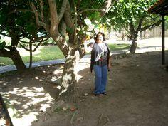 """""""A solidão que destrói é aquela que o ser humano não crê mais em Deus e em si mesmo. É a solidão que mata o espírito"""".Prof Lourdes Duarte http://pensador.uol.com.br/autor/prof_lourdes_duarte/ http://filosofandonavidaproflourdes.blogspot.com.br/ http://professoralourdesduarte.blogspot.com.br/"""