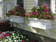 Window Boxes gardens. Love this!!  Would add something to the side of the house which is SO plain!!