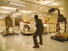 6/24/2015 | Jurassic World | dino taming | The Smithsonian uploaded this today. - Imgur