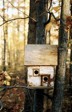 THE APLACHIAN Birdhouse