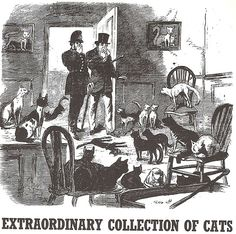 Possibly too many cats,    (Illustrated Police News)