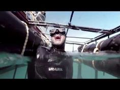 Go Shark Cage Diving in South Africa Shark Diving, Lions, South Africa, Shark Cage, Tourism, African, Ocean, Adventure, World